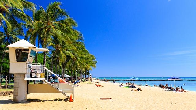 ハワイの旅行