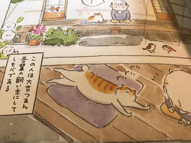ねこがとにかく可愛い漫画「ねことじいちゃん」