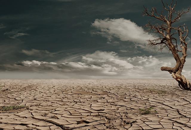 砂漠、乾燥