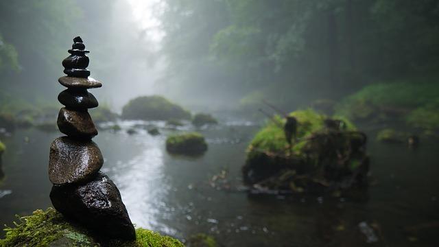 森の中の沼